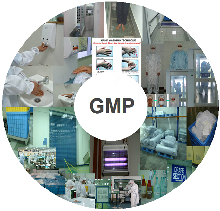 Rules and Regulations GMP